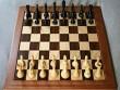 Onlayn şahmat turnirinin qalibi müəyyənləşdi
