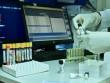 AMADA koronavirus peyvəndi ilə bağlı məlumat verdi