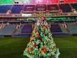 Stadionda quraşdırılan qeyri-adi küknar ağacı