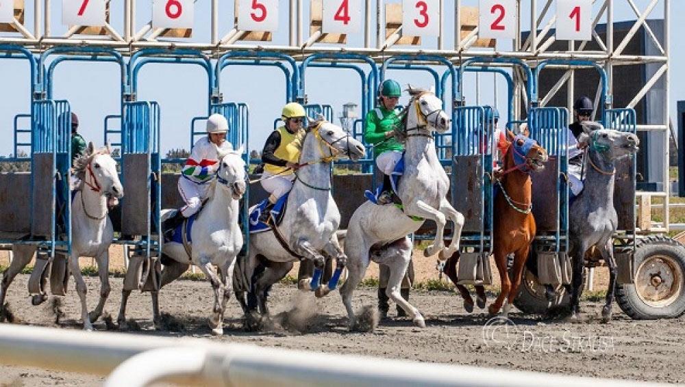 Mövsümün sonuncu cıdır yarışı