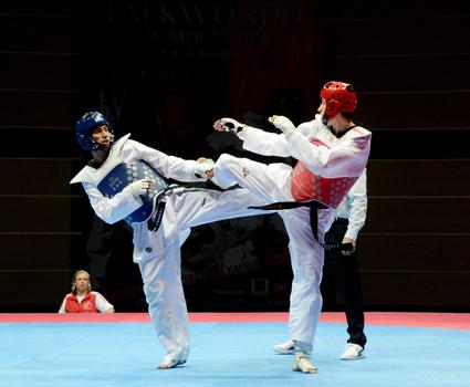 Millimiz Avropa çempionatını beş medalla başa vurdu